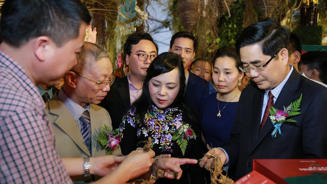 Lần đầu tiên hàng loạt dược liệu quý của Việt Nam tham gia hội chợ