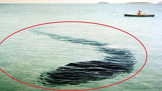 Những bức ảnh gây tranh cãi nhất: Ẩn chứa bí mật không thể giải đáp