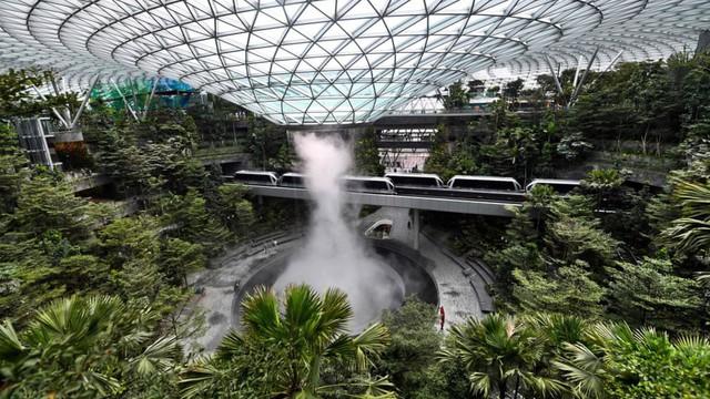 24h qua ảnh: Khu vườn xanh mướt trong sân bay ở Singapore