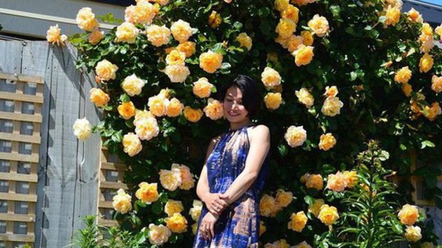 Khu vườn trăm hoa đua nở rực rỡ như chốn thiên đường của người phụ nữ Việt ở Úc
