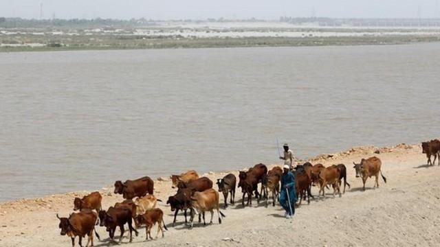 Ấn Độ sẽ nắn sông, cắt nguồn nước của Pakistan