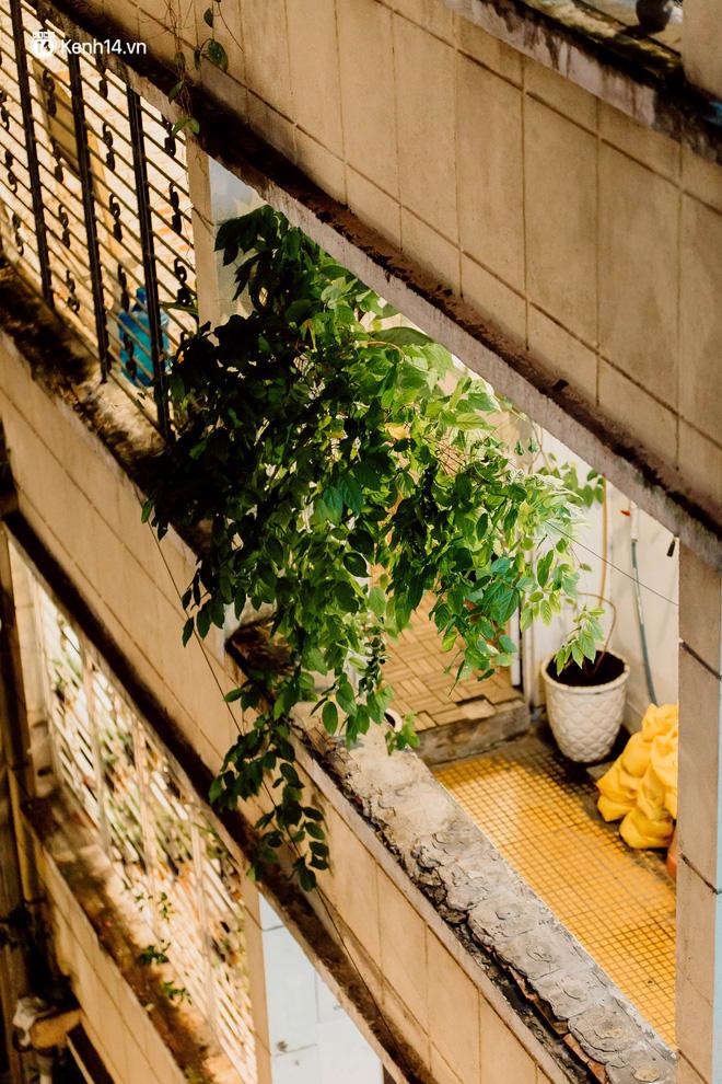 Cận cảnh chung cư Việt Nam lên báo Mỹ được khen nức nở: 1 tỷ đồng cho mỗi mét vuông, thiên đường cafe của giới trẻ Sài Gòn - Ảnh 18.