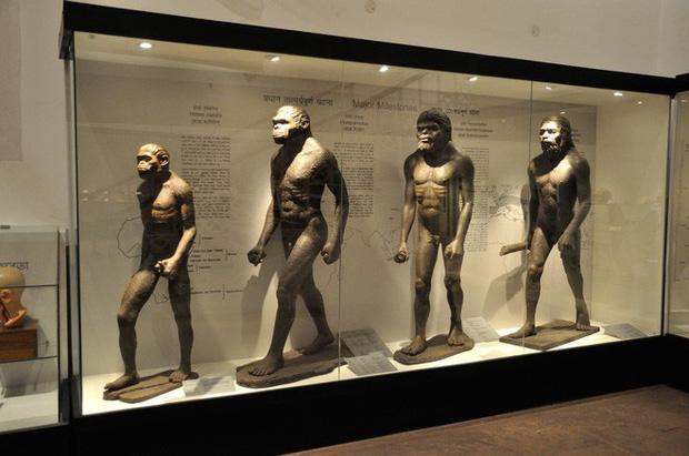 Con người từng có khả năng tái sinh cơ thể, nhưng đã bị tắt đi trong quá trình tiến hóa - Ảnh 3.