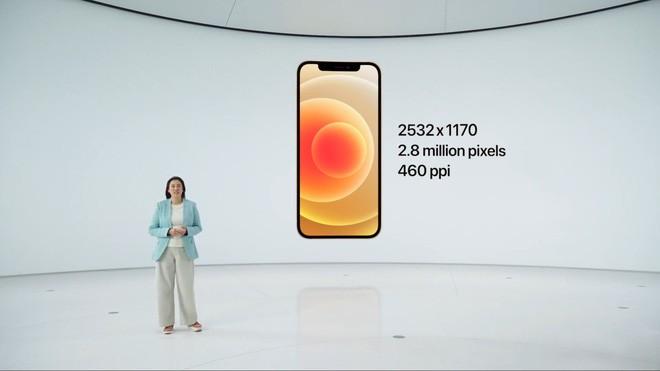 iPhone 12 và iPhone 12 mini ra mắt: Màn hình OLED, nâng cấp camera, A14 mạnh hơn 40%, hỗ trợ 5G, giá từ 699 USD - Ảnh 3.