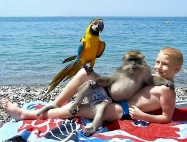 Những bức ảnh check-in du lịch hài hước đủ cung cấp ý tưởng cho hội chế ảnh thỏa sức sáng tạo - Ảnh 17.