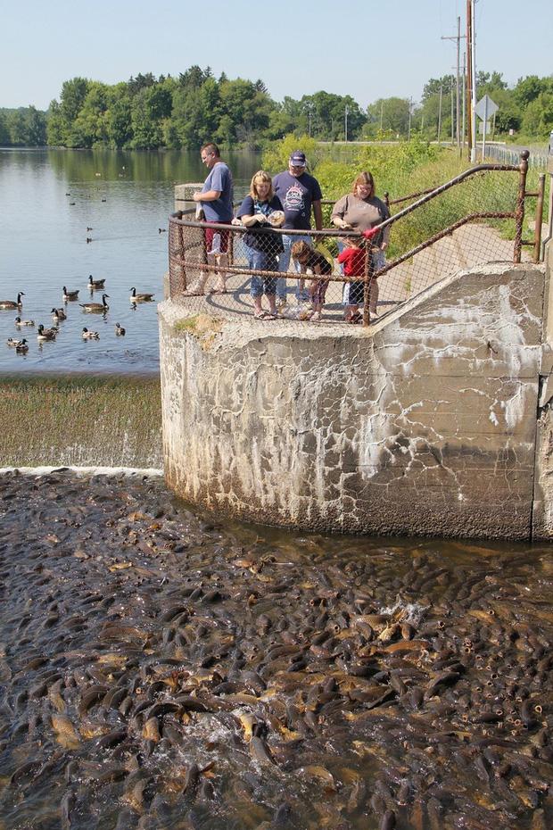 Cảnh tượng đáng kinh ngạc ở hồ nước này đã thu hút sự chú ý của du khách