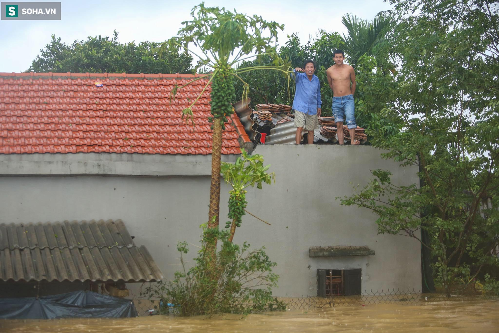 Những cánh tay 'cầu cứu' từ mái nhà trong cơn lũ lịch sử ở Quảng Bình - Ảnh 12.