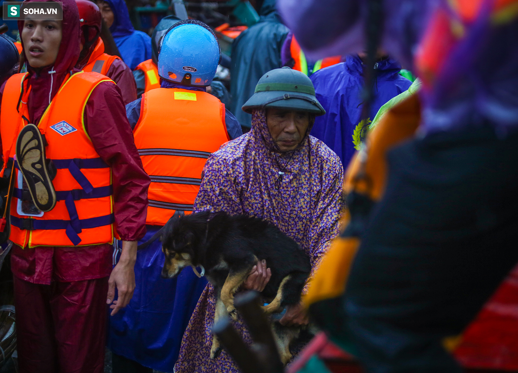 [Ảnh] Người phụ nữ ở Quảng Bình lao ra dòng nước lũ xin đồ ăn cho mẹ già bật khóc khi được cứu hộ khỏi ghe lật  - Ảnh 4.