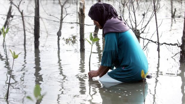 Mưa lũ bất thường gia tăng liên tiếp tại châu Á vì biến đổi khí hậu - Ảnh 3.