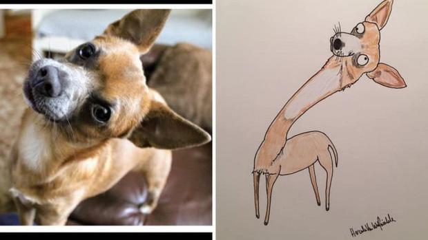 Vẽ chó mèo xấu như ma cấu nhưng vẫn bán được 150 triệu đồng, họa sĩ bèn đem đi từ thiện cho đỡ mang tiếng - Ảnh 7.