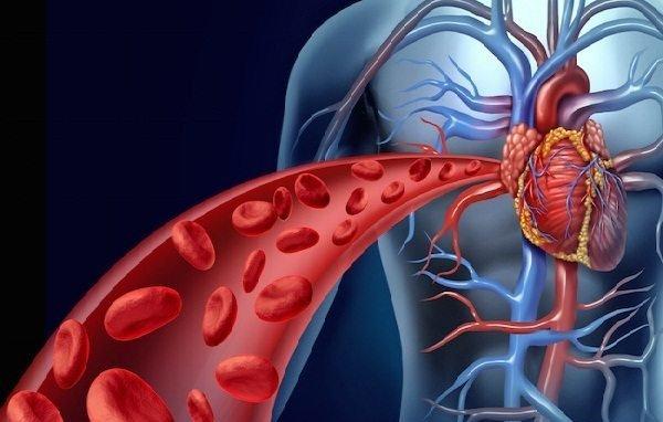 Nghiên cứu mới từ Harvard tiết lộ chỉ với 5 phút buổi sáng tại nhà, chúng ta có thể đẩy lùi nguy cơ bệnh tim, đột quỵ thậm chí là tiểu đường - Ảnh 1.