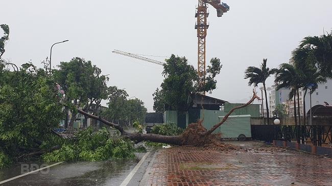 BÃO SỐ 9 ĐỔ BỘ: 2 cán bộ xã bị sạt lở vùi lấp, mất tích ở Quảng Nam; Gió bão mạnh giật bay mái tôn trường học, mái nhà dân - Ảnh 3.