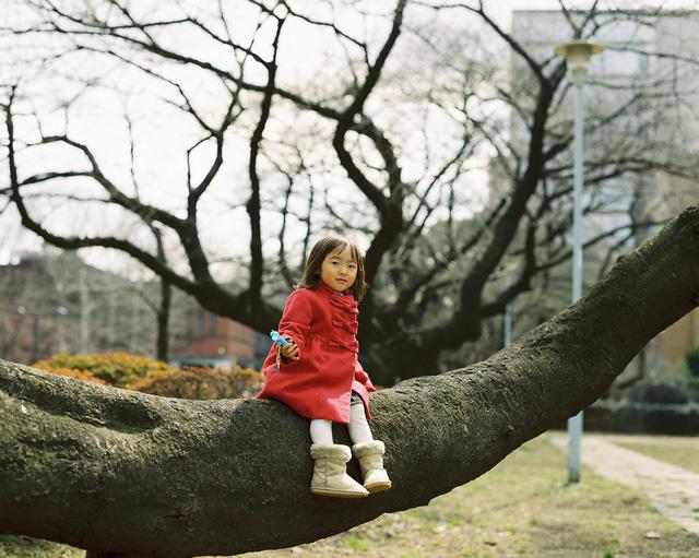Bố Nhật cùng con gái bị bệnh tim bẩm sinh chiến đấu suốt 10 năm: Bố chẳng cần gì, chỉ cần con sống và 10.000 bức ảnh cảm động lòng người - Ảnh 21.