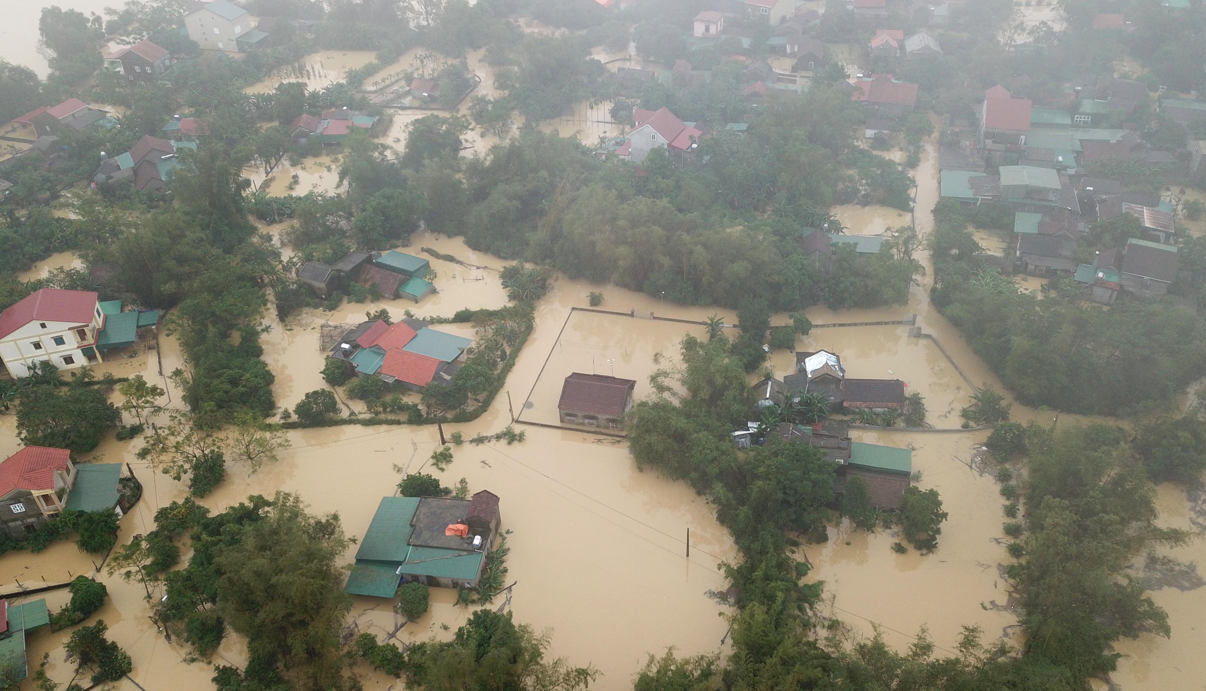 Nghệ An: Người dân ven sông phải lên đê dựng lều cho trâu bò trú ẩn - Ảnh 2.