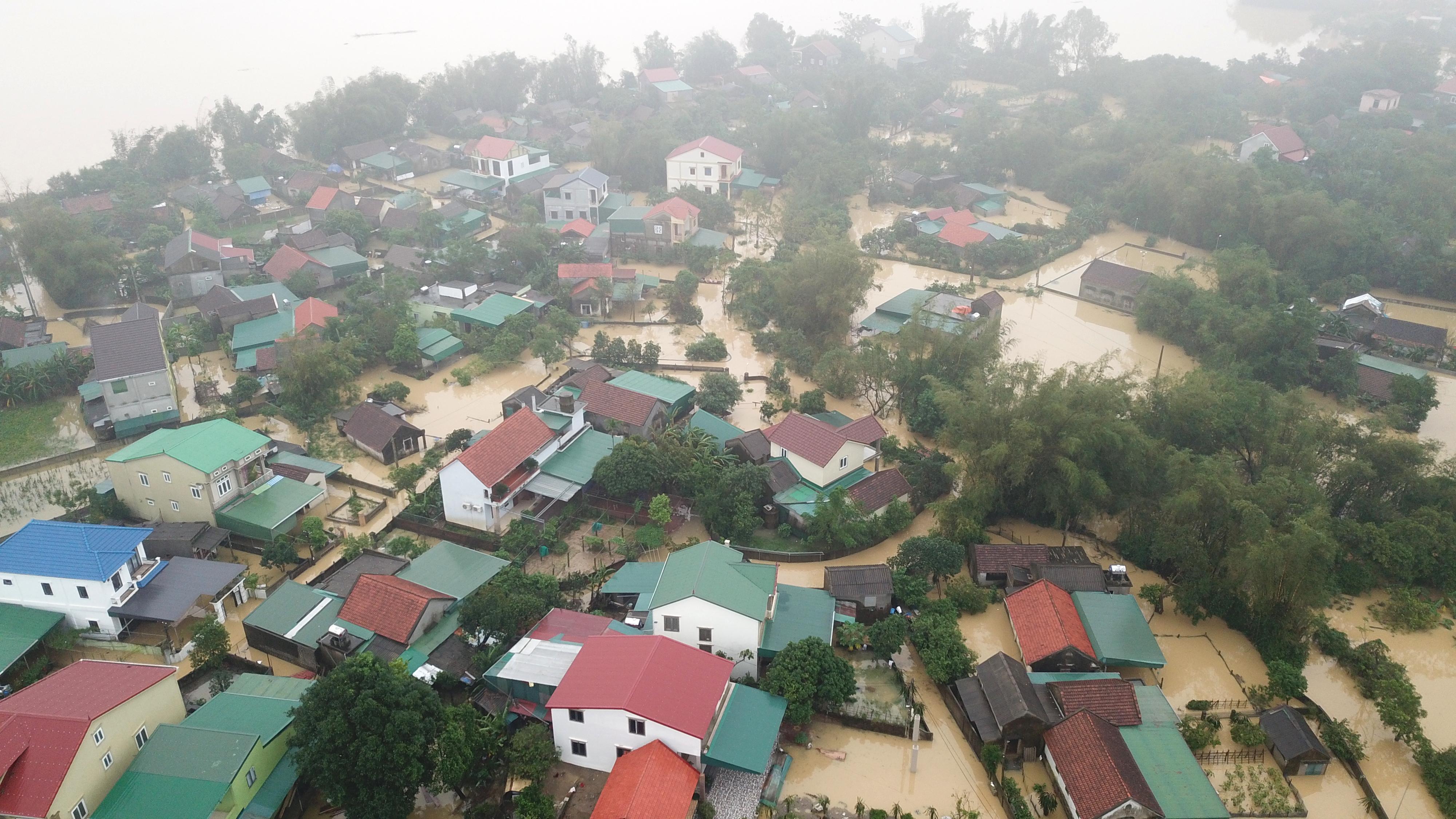 Nghệ An: Người dân ven sông phải lên đê dựng lều cho trâu bò trú ẩn - Ảnh 1.