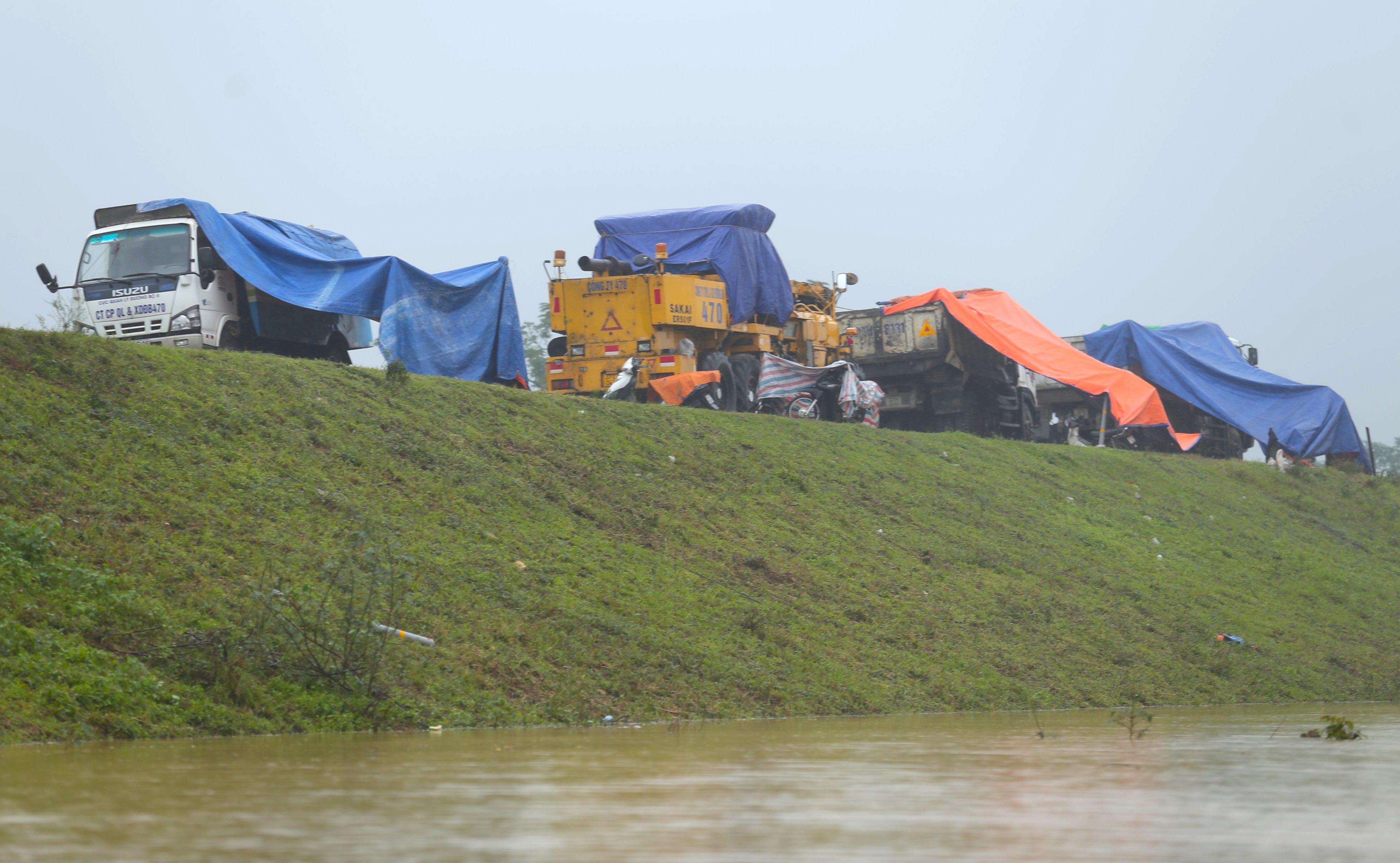 Nghệ An: Người dân ven sông phải lên đê dựng lều cho trâu bò trú ẩn - Ảnh 18.