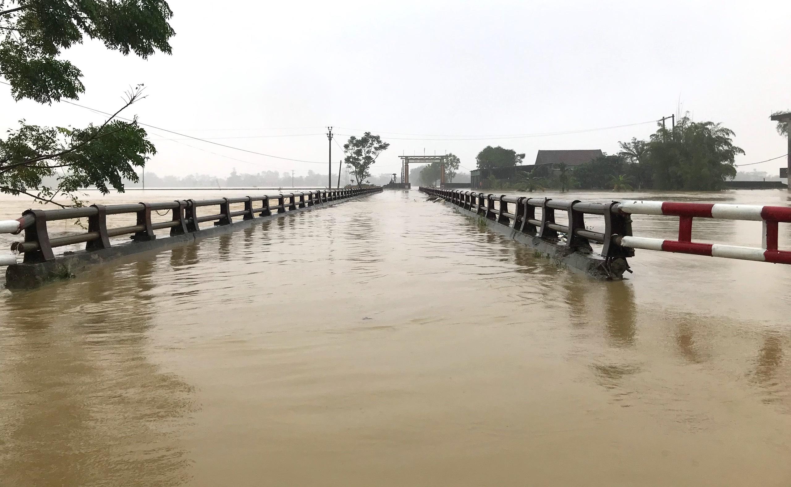 Nghệ An: Người dân ven sông phải lên đê dựng lều cho trâu bò trú ẩn - Ảnh 11.