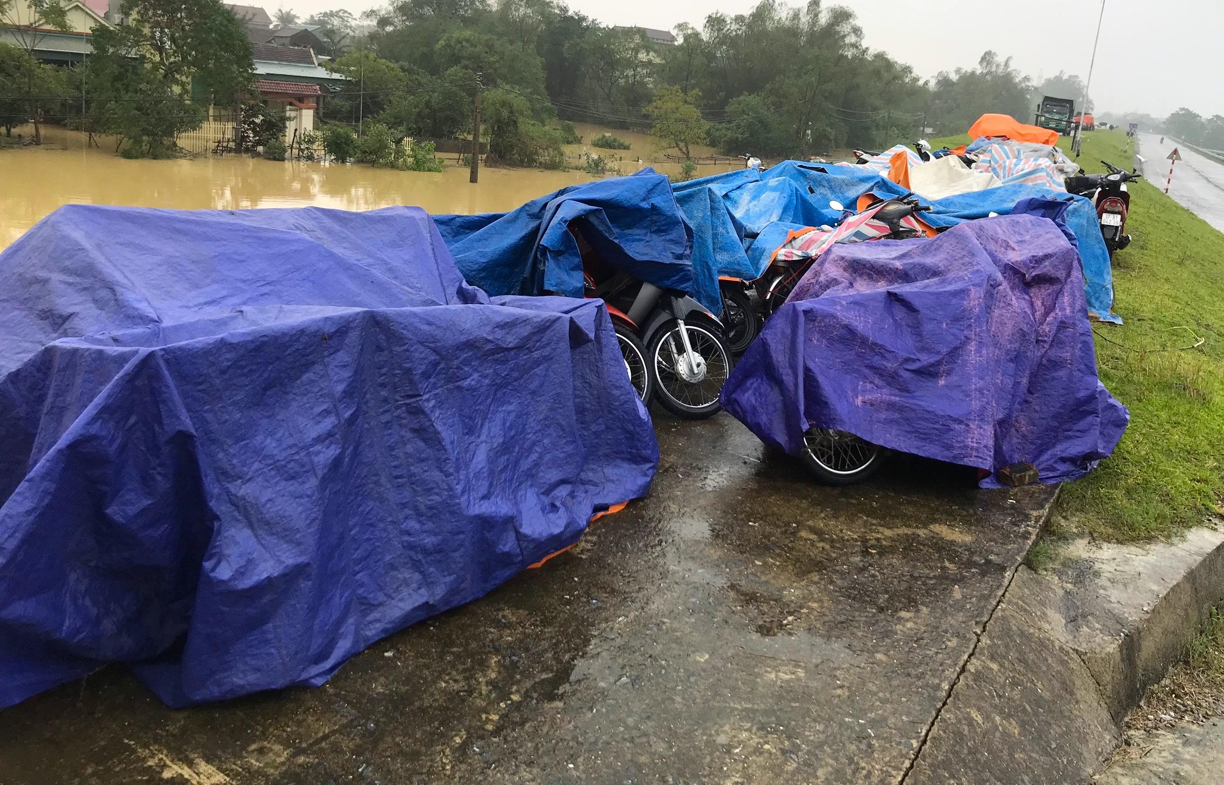 Nghệ An: Người dân ven sông phải lên đê dựng lều cho trâu bò trú ẩn - Ảnh 17.
