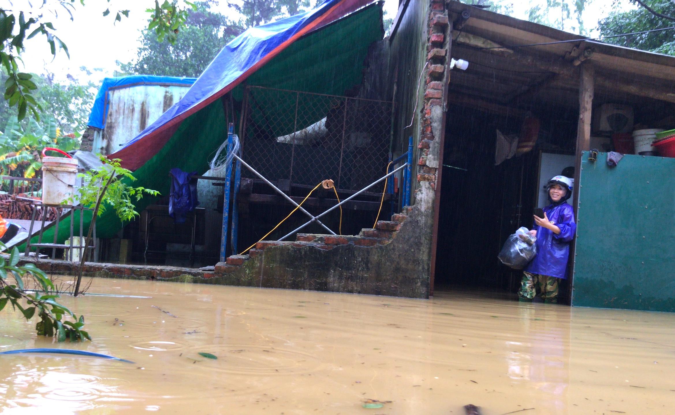 Nghệ An: Người dân ven sông phải lên đê dựng lều cho trâu bò trú ẩn - Ảnh 8.