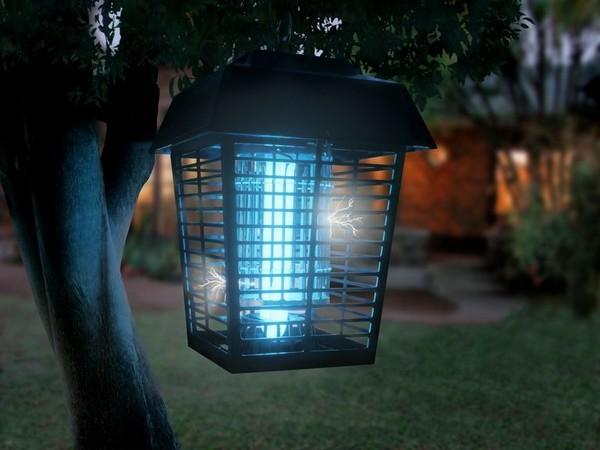 Đèn bắt muỗi có thực sự hiệu quả như quảng cáo? - Ảnh 1.