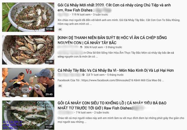 Thanh niên nhai cá sống chia sẻ lí do làm clip kinh dị trên VTV, bất ngờ hơn là thông tin cả xã có đến 20 kênh YouTube? - Ảnh 7.