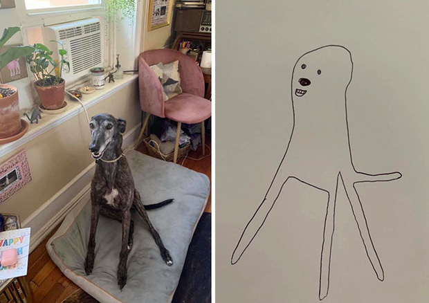 Bức tranh cún ngáo bất ngờ đánh bại mọi đối thủ nặng kí, giật giải quán quân trong cuộc thi vẽ chó - Ảnh 4.