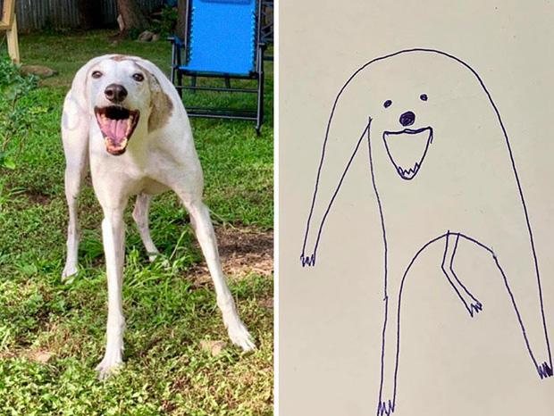 Bức tranh cún ngáo bất ngờ đánh bại mọi đối thủ nặng ký, giật giải quán quân trong cuộc thi vẽ chó - Ảnh 1.