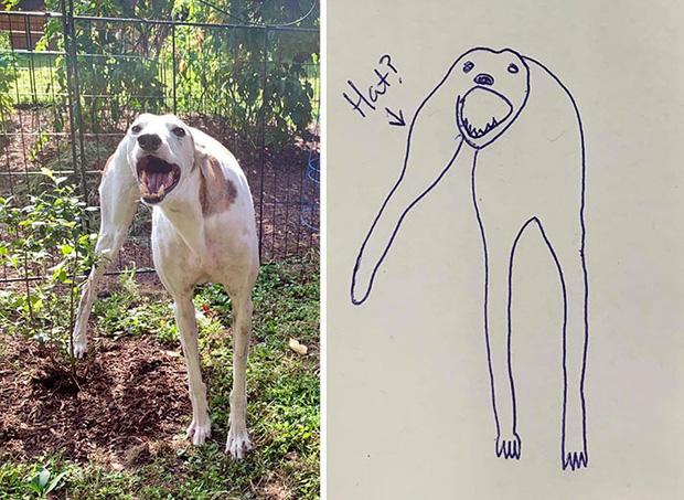 Bức tranh cún ngáo bất ngờ đánh bại mọi đối thủ nặng ký, giật giải quán quân trong cuộc thi vẽ chó - Ảnh 3.