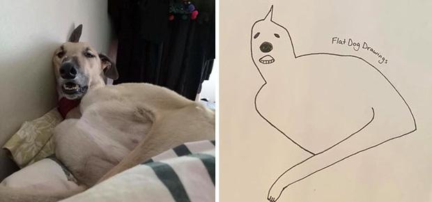 Bức tranh cún ngáo bất ngờ đánh bại mọi đối thủ nặng ký, giật giải quán quân trong cuộc thi vẽ chó - Ảnh 6.