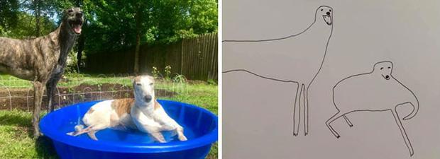 Bức tranh cún ngáo bất ngờ đánh bại mọi đối thủ nặng ký, giật giải quán quân trong cuộc thi vẽ chó - Ảnh 7.