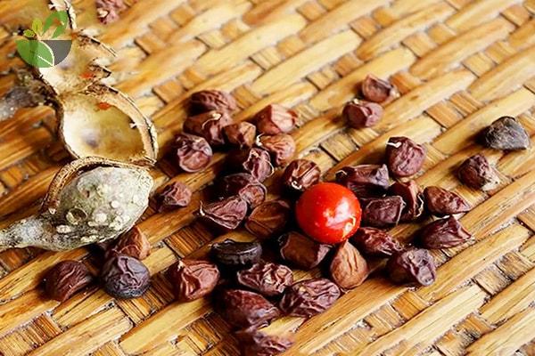 Thứ gia vị vàng của người Việt, ai ăn một lần đều sẽ nghiện - Ảnh 7.