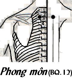 Hai chuyên gia chỉ vài nốt tròn trên tay và lưng để phòng trị bệnh mùa lạnh - Ảnh 7.