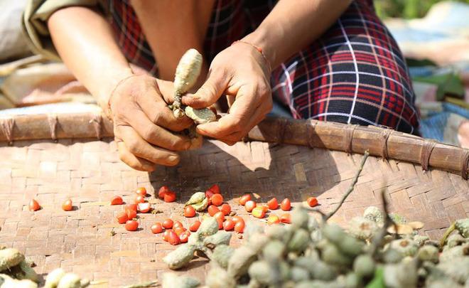 Thứ gia vị vàng của người Việt, ai ăn một lần đều sẽ nghiện - Ảnh 5.