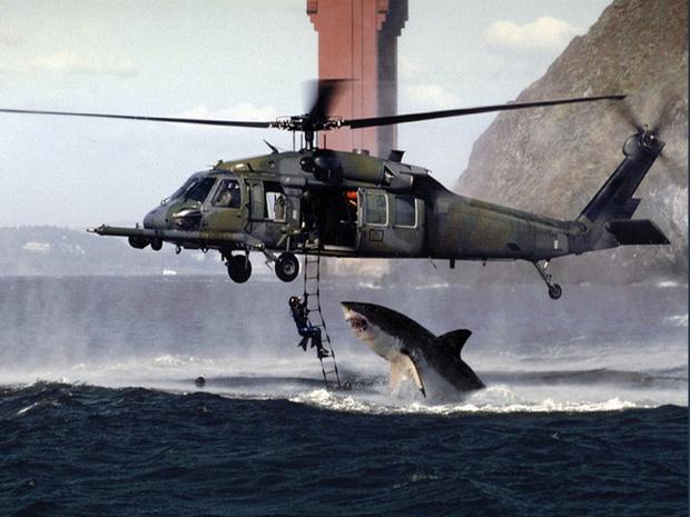 Bức ảnh cá mập nhảy lên khỏi mặt nước sắp ngoạm người đàn ông sau 19 năm vẫn khiến dân mạng thót tim và tò mò về số phận nạn nhân - Ảnh 1.