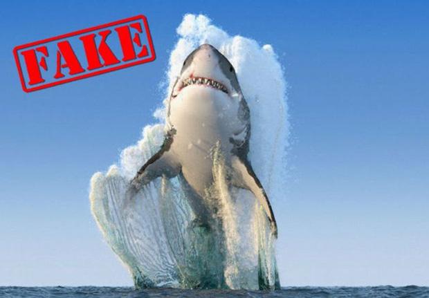 Bức ảnh cá mập nhảy lên khỏi mặt nước sắp ngoạm người đàn ông sau 19 năm vẫn khiến dân mạng thót tim và tò mò về số phận nạn nhân - Ảnh 7.
