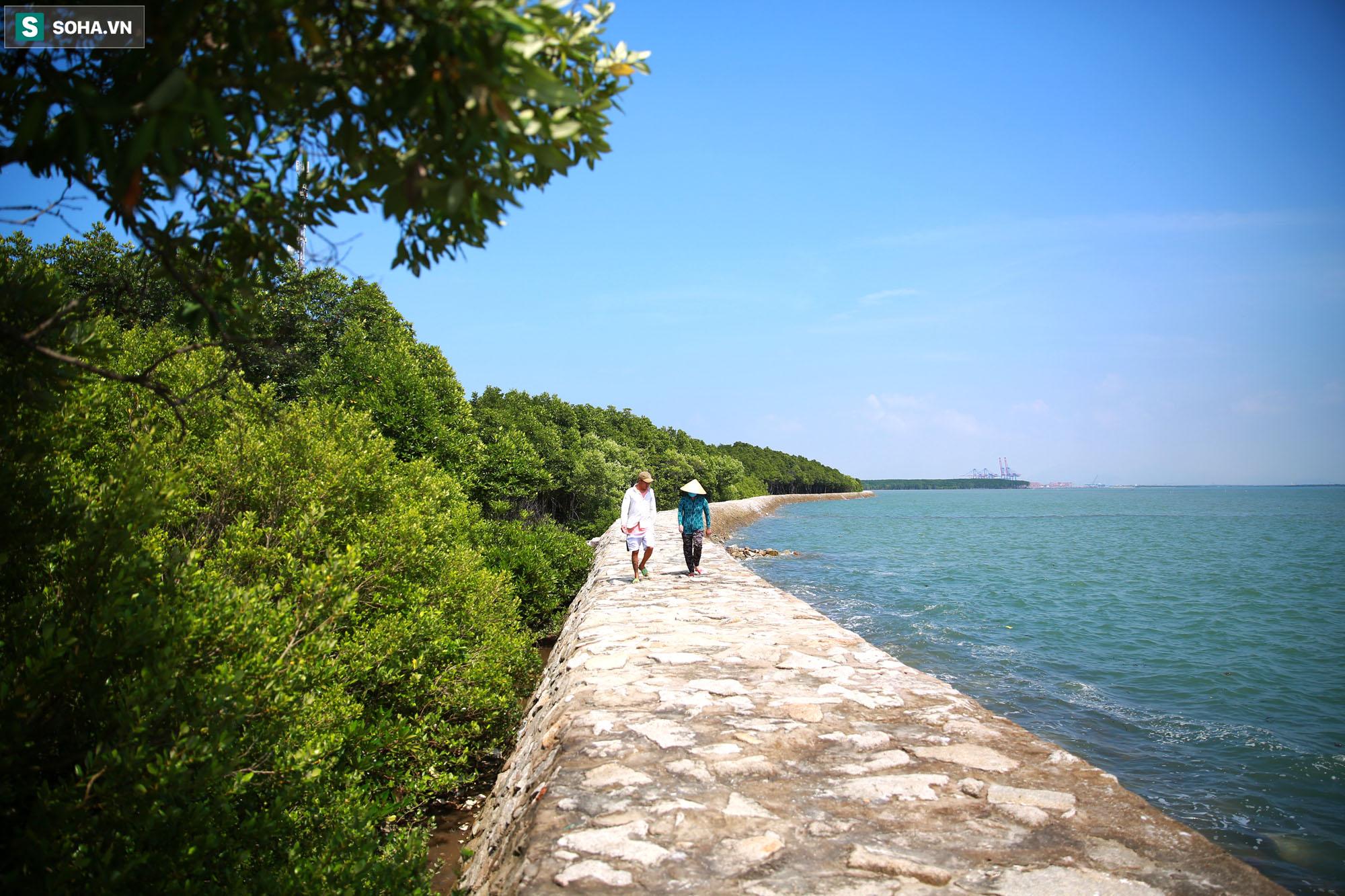 Nằm giữa biển Cần Giờ có một hòn đảo đẹp ngỡ ngàng, hoang sơ, rất ít người biết ở TP.HCM - Ảnh 3.
