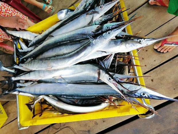 Đi du lịch đảo Nam Du, chàng trai khoe món cá lạ có xương màu xanh lá cây khiến cộng đồng mạng xôn xao - ảnh 5
