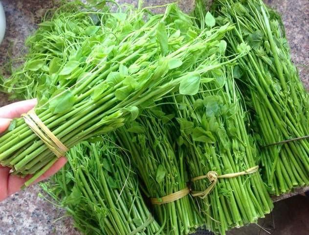 Làm giàu từ loại rau có mùi khai, giá lên đến 70.000 đồng/bó - Ảnh 1.