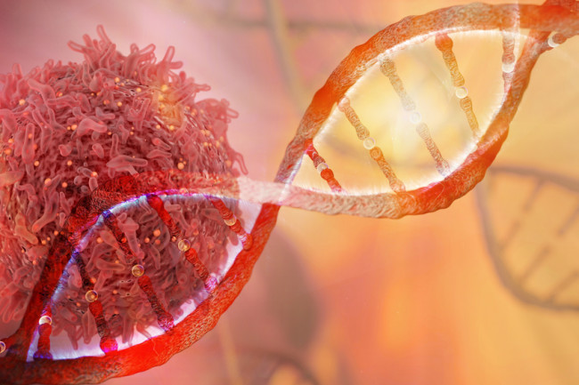 Thủ phạm gây ung thư được nêu tên số 1: Chứa 70 hóa chất phá hỏng ADN, có thể gây ra 12 loại ung thư - Ảnh 3.
