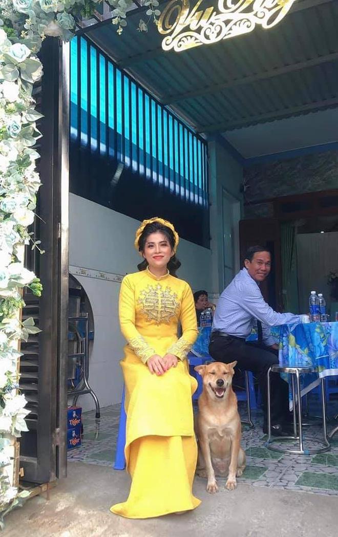 Đám cưới rộn ràng khắp MXH nhờ sự xuất hiện của... một chú chó, biểu cảm vui như Tết khiến ai cũng phải bật cười - Ảnh 1.