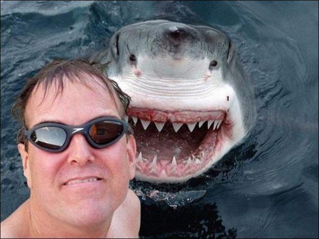 Đưa đầu vào miệng cá sấu cười toe toét, anh chàng khiến người xem bủn rủn tay chân và loạt ảnh selfie thách thức Tử thần không phải ai cũng dám thử - Ảnh 20.
