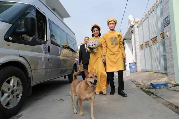 Đám cưới rộn ràng khắp MXH nhờ sự xuất hiện của... một chú chó, biểu cảm vui như Tết khiến ai cũng phải bật cười - Ảnh 3.