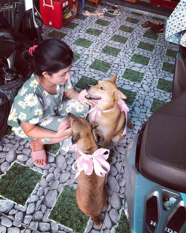 Đám cưới rộn ràng khắp MXH nhờ sự xuất hiện của... một chú chó, biểu cảm vui như Tết khiến ai cũng phải bật cười - Ảnh 4.
