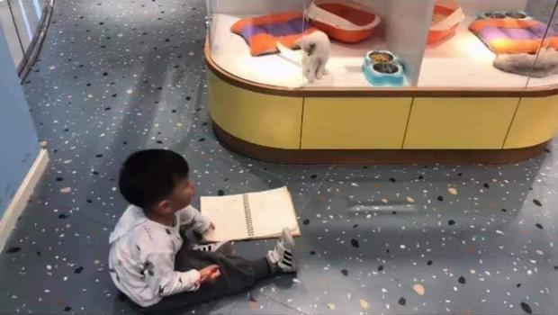 Cậu bé lăn lộn cả tiếng để vẽ mèo nộp cho cô giáo, tưởng đẹp miễn chê ai ngờ lại thành ra thế này - Ảnh 2.