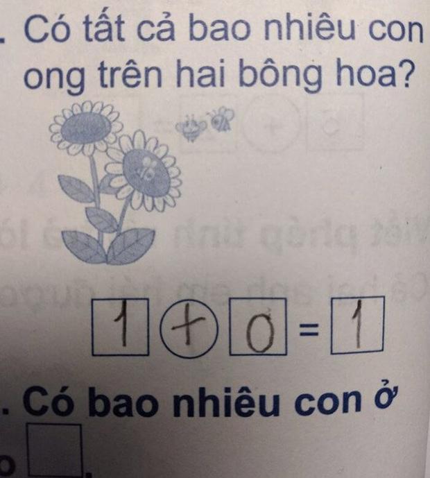Con giải 1 + 0 = 1, bà mẹ khăng khăng gạch đi, nghe lời giải thích hóa ra lại hợp lý phết! - Ảnh 1.