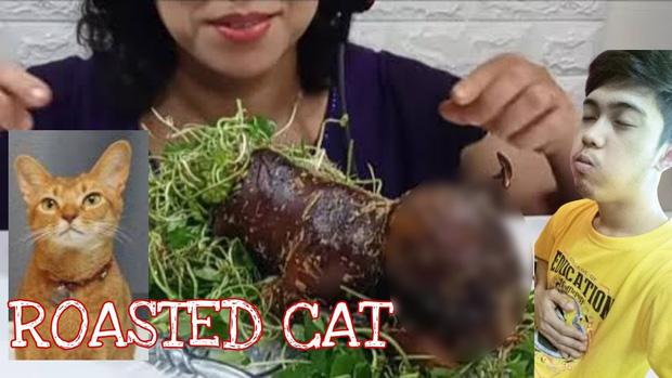 Ăn thịt chó mèo, vlogger người Việt gây tranh cãi dữ dội: nhiều người phẫn nộ, một số lại cho là chuyện bình thường - ảnh 4