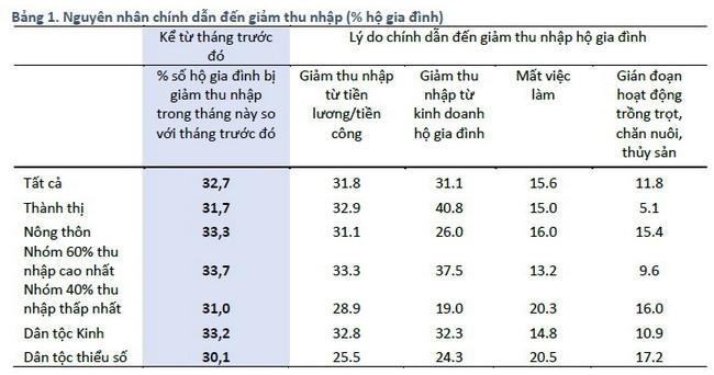 WB công bố kết quả khảo sát tác động của đại dịch COVID-19 lên 4.000 hộ gia đình tại Việt Nam - ảnh 3