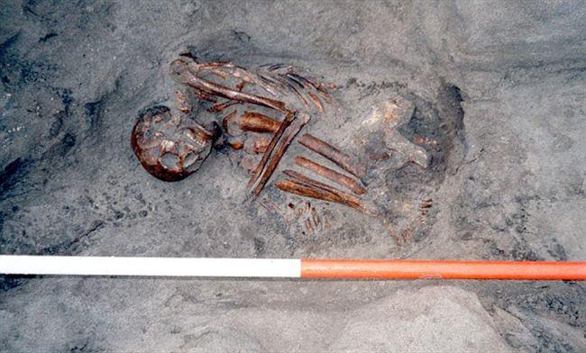 Phát hiện khảo cổ quái dị: Xét nghiệm ADN cho thấy xác ướp 3000 tuổi được chắp vá từ 6 di thể - Ảnh 5.