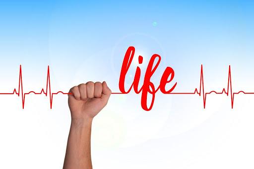 Vì sao người hiện đại lại không khỏe mạnh tối ưu như xưa: 5 yếu tố khiến bệnh tật tràn lan - Ảnh 2.
