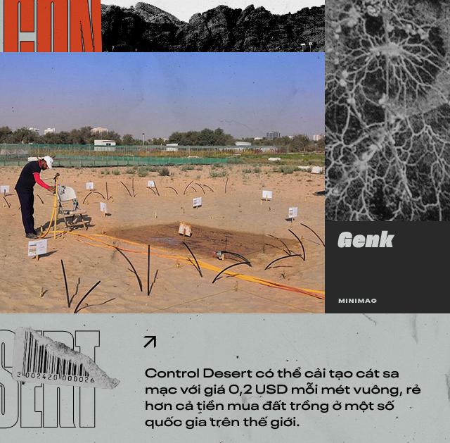 Đất sét nano: Công nghệ đột phá có thể biến sa mạc thành đồng ruộng trong 7 tiếng đồng hồ - Ảnh 11.